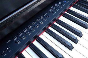 Как выбрать синтезатор для начинающих: делаем правильный выбор с Chip